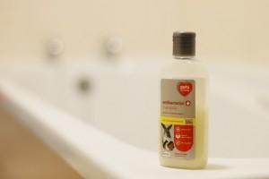 Guinea Pig Shampoo