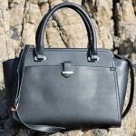The Accessorize Melissa Winged Bag