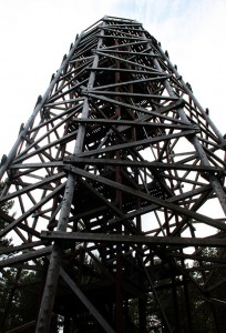 Fire Tower, Landmark Forest Adventure Park
