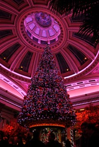 Christmas Tree, The Dome, Edinburgh