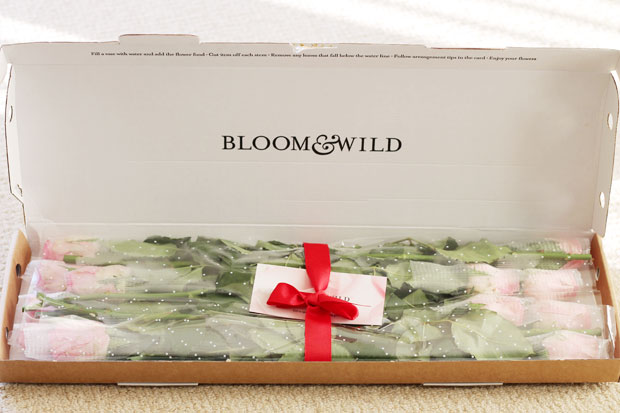 The Rosalind, Bloom and Wild Flowers