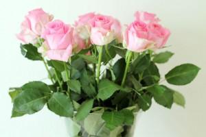 The Rosalind, Bloom & Wild Flowers