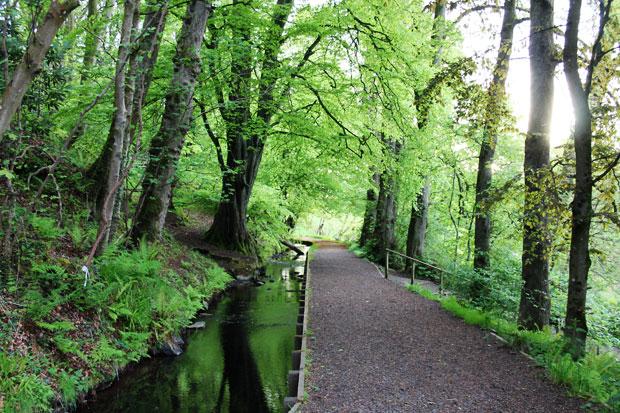 Lovers Walk, Isle of Bute