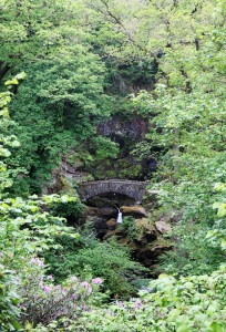 Bridge, Aira Force
