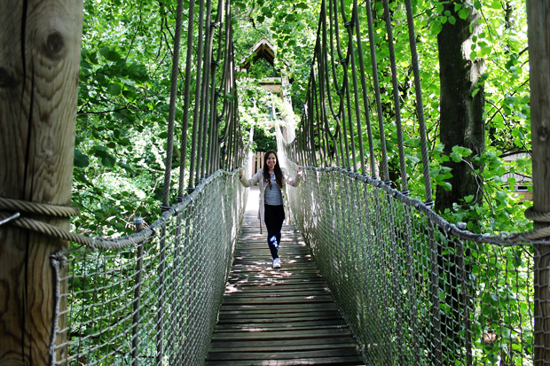 Rope Bridges, The Alnwick Garden Treehouse