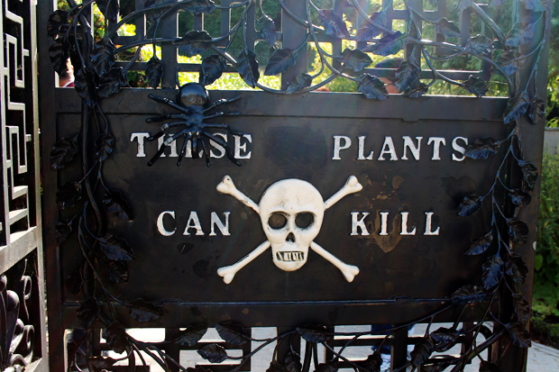 Poison Garden, The Alnwick Garden