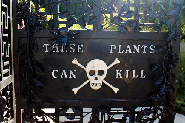 Poison Garden, The Alnwick Garden