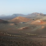 Lanzarote South Tour – Timanfaya National Park