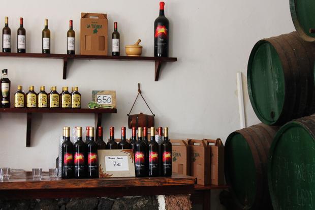 Traditional Vineyard, Lanzarote