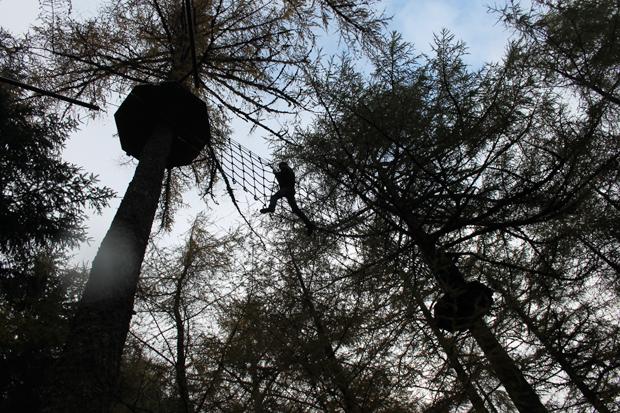 Cargo Net, Go Ape, Whinlatter Forest