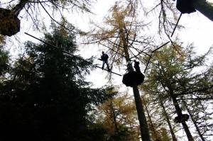 Crossing, Go Ape, Whinlatter Forest