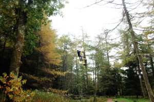Small Zip Wire, Go Ape, Whinlatter Forest
