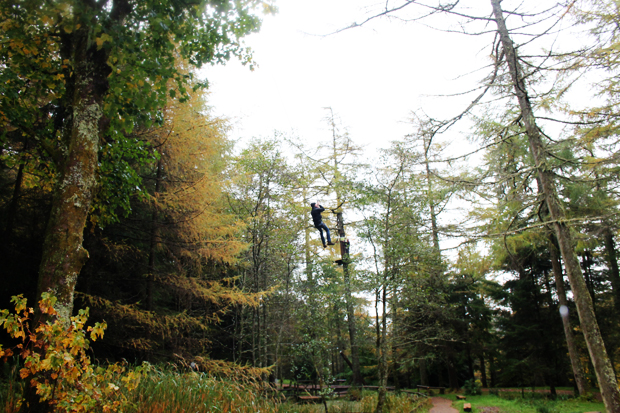 Small Zip Wire, Go Ape, Whinlatter Forest