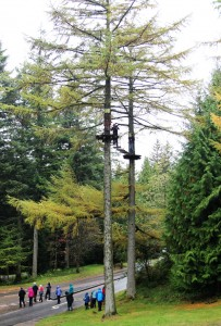 Tall Zipwire, Go Ape, Whinlatter Forest