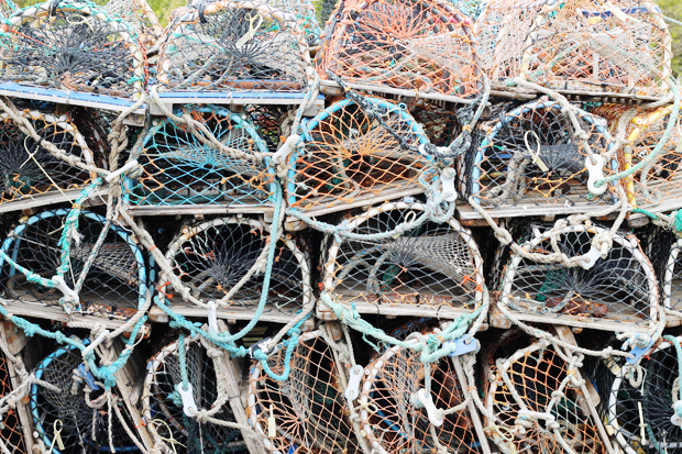 Lobster Pots, Craster