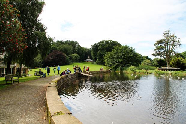 Duck Pond, Culzean Country Park, Ayrshire, Scotland